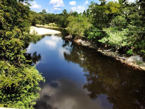 600x450 At US 84 where Lowndes County plans a park, in Alapaha River, by Chris Graham, for WWALS.net, 17 August 2014