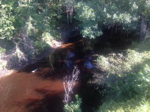 960x720 Very Red, in Alapahoochee River, by April Huntley, 1 September 2014