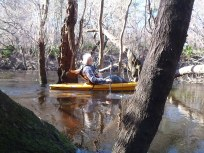 2048x1536 John S. Quarterman in orange canoe, in Alapaha River at Statenville, January 2014 WWALS Outing, by Gretchen Quarterman, 18 January 2014