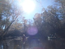 4288x3216 Sun in the sky, in Alapaha River at Statenville, January 2014 WWALS Outing, by Gretchen Quarterman, 18 January 2014