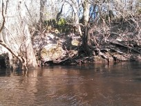 640x480 Spring, in Statenville to Sasser Landing on the Alapaha River, by John S. Quarterman, for WWALS.net, 15 February 2015