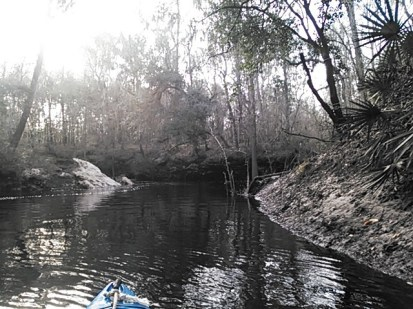 640x480 Alapahoochee River, in Statenville to Sasser Landing on the Alapaha River, by John S. Quarterman, for WWALS.net, 15 February 2015