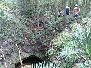 Trail along Five Holes 30.4177608, -83.1548080