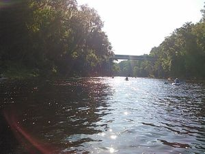 Upstream on the Suwannee River 30.4372501, -83.0931778