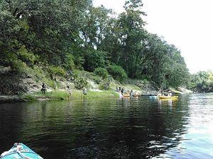 Wading at Sabal Trail 30.4069996, -83.1566543