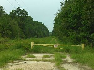 Blue Springs Road closed to Spook Bridge 30.7908344, -83.4440613