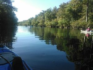 Down the Withlacoochee River 30.5956001, -83.2593307