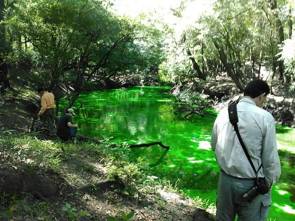 Solid green Dead River