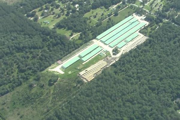 Figure 12: Pipe Yard on top of former forested wetlands