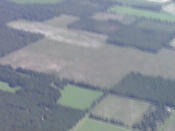 Suwannee River n to Suwannee Farms