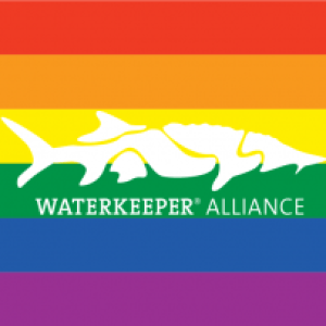 Waterkeeper Rainbow Flag with Sturgeon