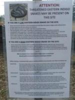 Indigo snake sign, 30.3918 -83.15293