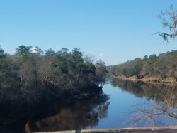Suwannee River downstream, US 90 bridge, 30.3850867, -83.1761150