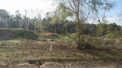 Drill site, 30.7875867, -83.4453779