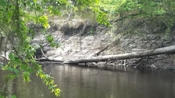 Bluff downstream a bit