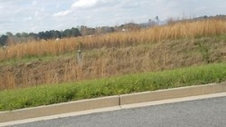 MV marker on Gateway Dr, smoke behind, 30.7611163, -83.5521486