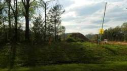 Movie: Sabal Trail w of Ouslie Road (13M) 30.7684843, -83.4192938