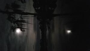 Cypress holding full moon 31.0305602, -83.1082648