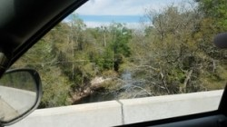 Alapaha River from US 84 bridge