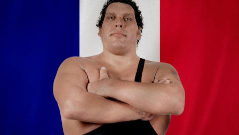 Image result for andre the giant france