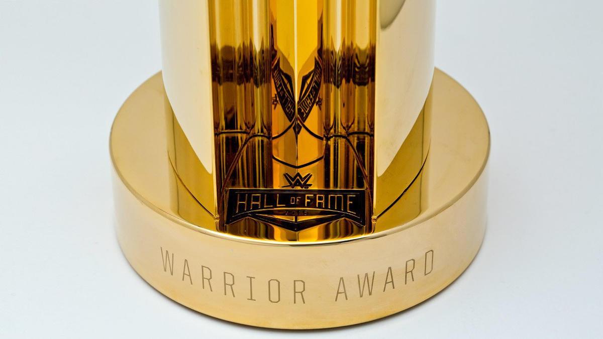 Image result for wwe warrior award