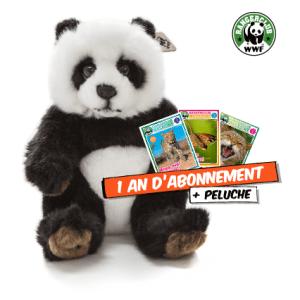 WWF Panda + abo rangerclub