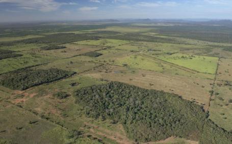 Déforestation dans la zone entre le Cerrado et le Pantanal, sud du Mato Grosso, Brésil