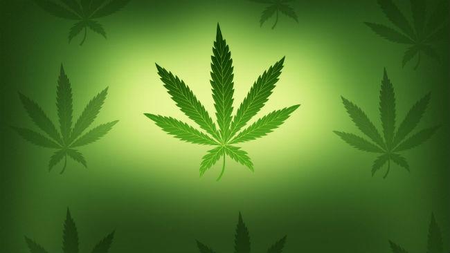Marijuana_368704
