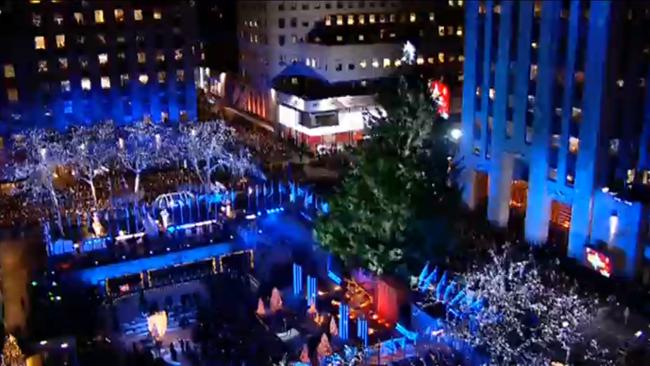 christmas tree_751038