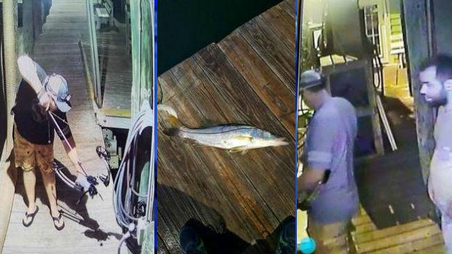 bow fishing pic 4_1531246599678_1531254106249.jpg.jpg