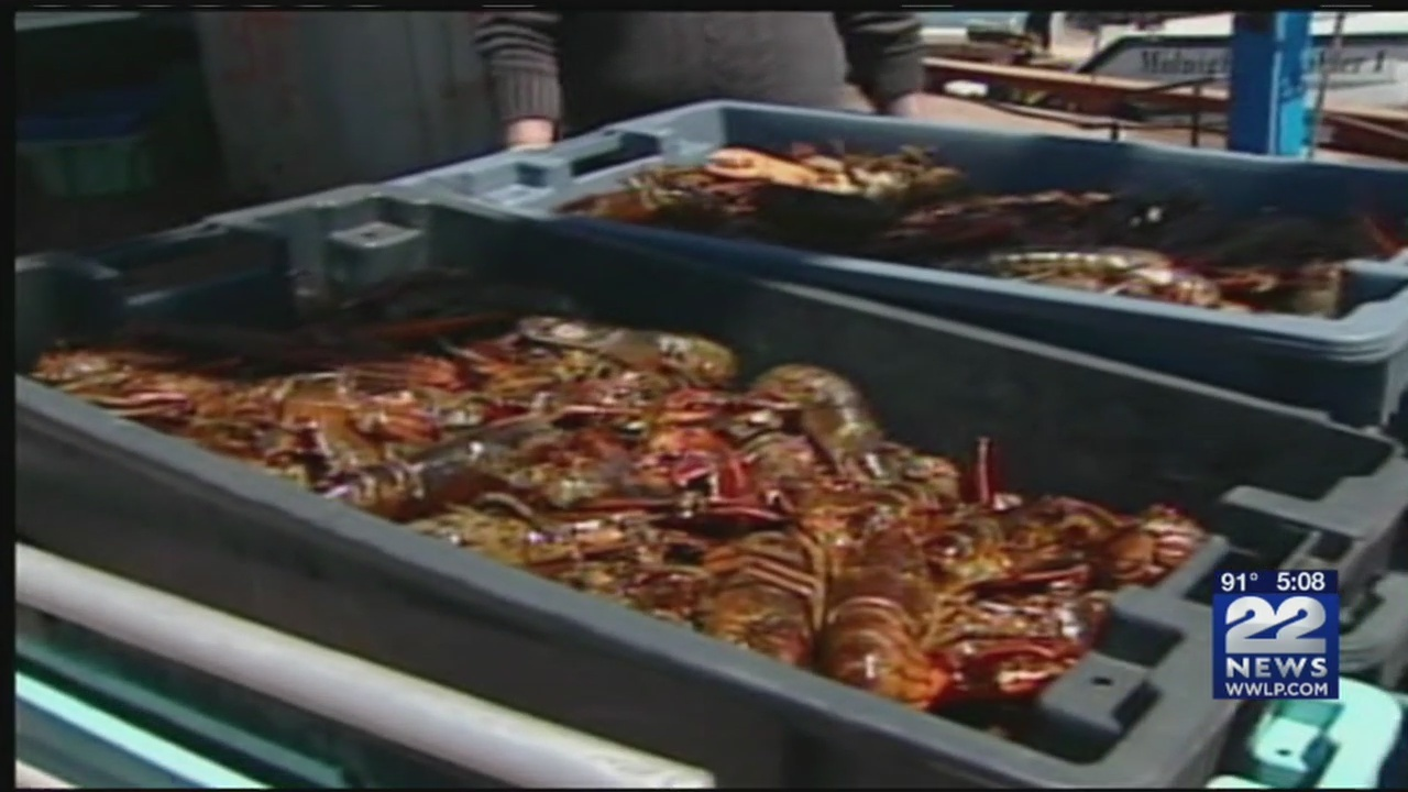 Lobster_prices_higher_due_to_March_storm_0_20180502230051