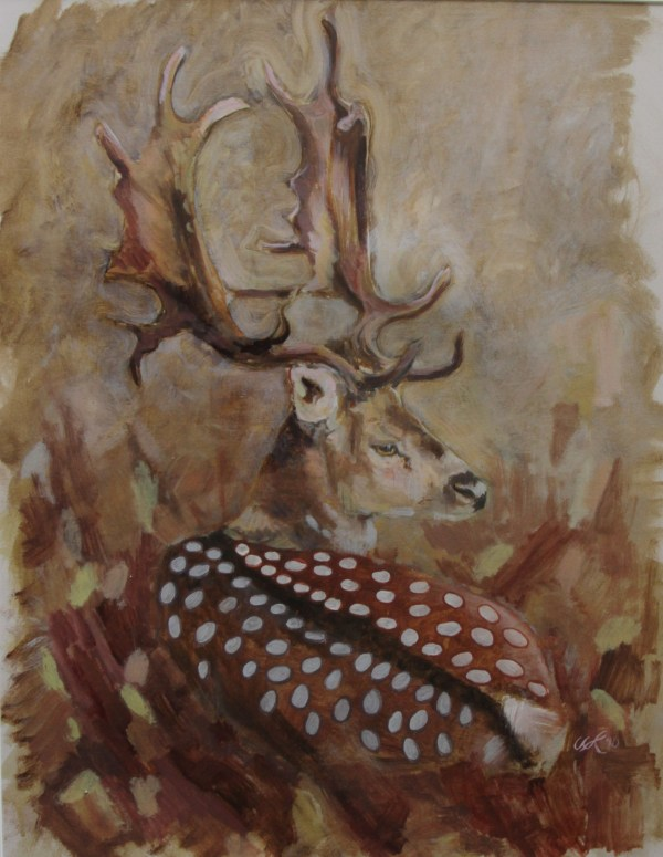 Fallow Deer Kate Knott Deddinton Art