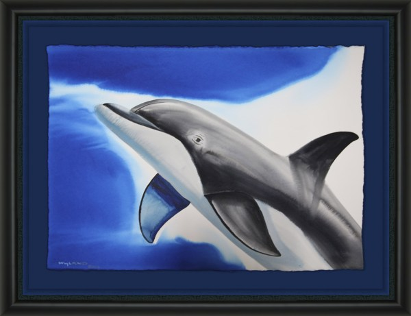 Dolphin Wyland Galleries