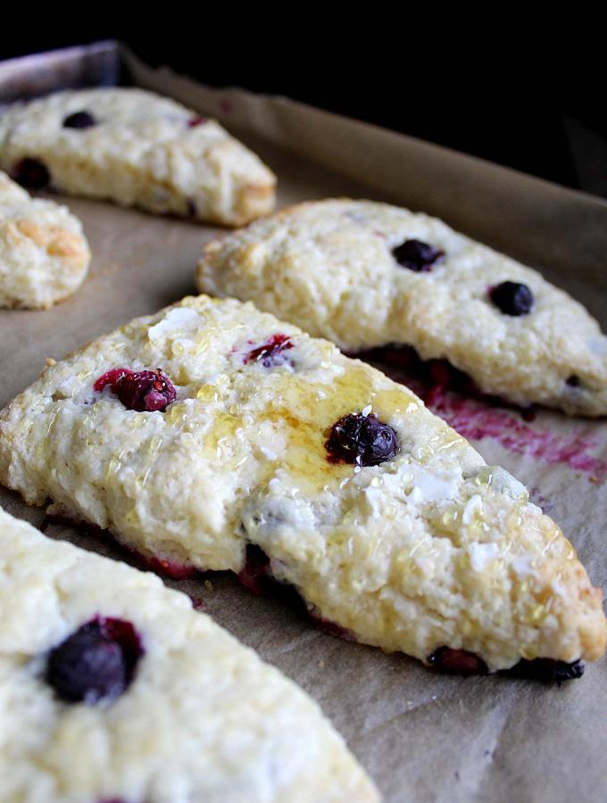 Easy Blueberry Scones | Scottish Scones | Scone Recipe | Sour Cream | Blueberry Recipe | Breakfast