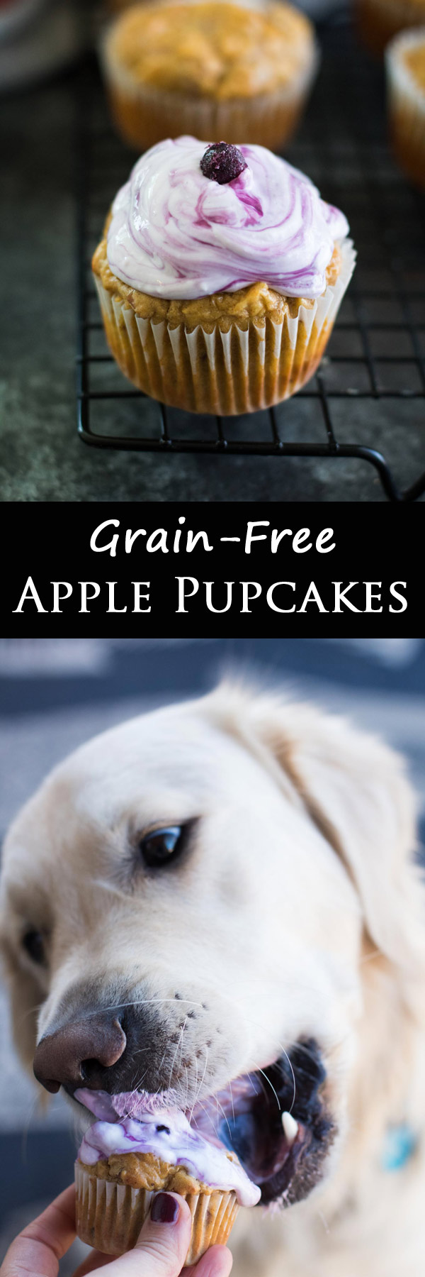 Four simple ingredients that make these pupcakes perfect for spoiling our puppies while not upsetting their tummies or any allergies! Grain-free and topped with frosting!