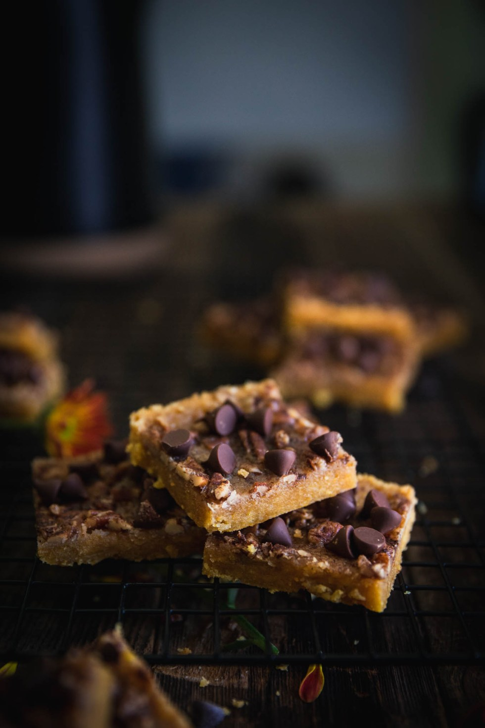 Soft Pumpkin Pecan Toffee Bars topped with chocolate chips!   Easy Recipes   Dessert   Pumpkin Spice   Fall Baking