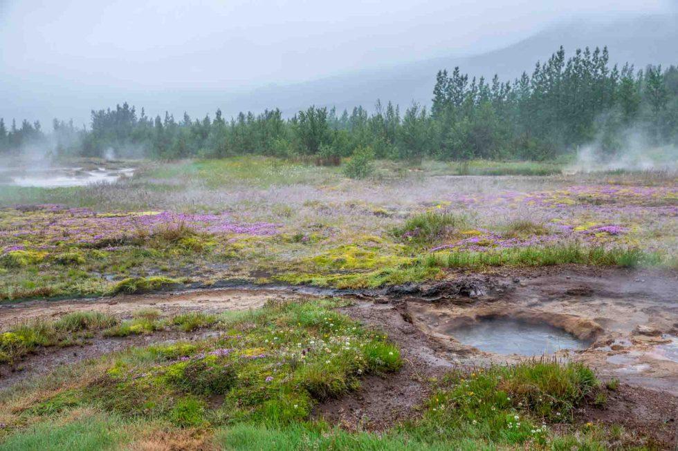 Strokkur | Thingvellir National Park | Iceland Itinerary | Geysir