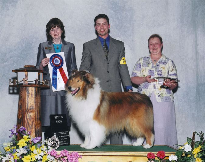 best-in-show-collie_twin-city-secret-ambition