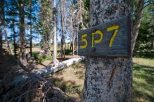 Campsite in Yellowstone's Upper Pelican Valley