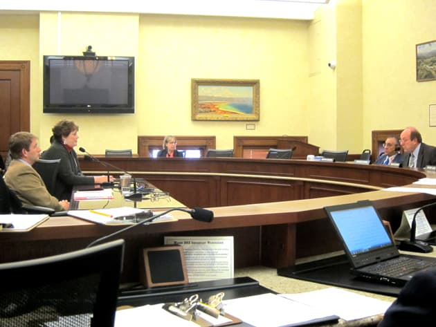 Becky Veandeberghe of WyWatch Family Action testifies against SF-131 Discrimination before the Senate Judiciary Committee. At left and center are bill sponsors Sen. Chris Rothfuss (D-Laramie) and Rep. Cathy Connolly (D-Laramie). Committee member Sen. Bruce Burns (R-Big Horn) is at right. (WyoFile/Greg Nickerson)