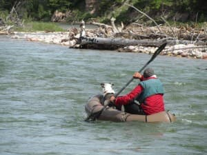 Forrest McCarthy and Fryxell paddle on the White River in Montana. (Photo courtesy Thomas Turiano)