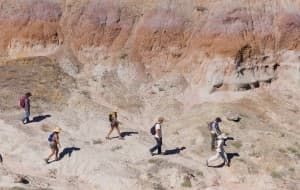 The crew of fossil hunters takes off into Paradise Alley west of Worland for a day of searching in the badlands. The 100-mile-long Bighorn Basin is the best place in the world to find Eocene-epoch fossils, in part because of exposed, un-vegetated slopes. (Angus M. Thuermer Jr./WyoFile — click to enlarge)