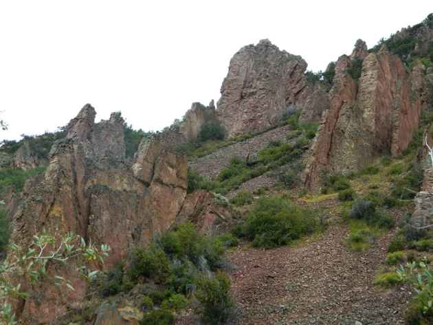 What were once horizontally deposited marine sediments have been twisted and folded into vertical rock fins that were then uplifted and eroded to the surface. (click to enlarge)