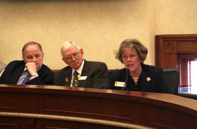 At right, Rep. Marti Halverson (R-Etna) testifies against Medicaid expansion, while Rep. Allen Jaggi (R-Lyman) (middle) and Rep. Garry Piiparinen (R-Evanston) listen. (WyoFile/Gregory Nickerson)