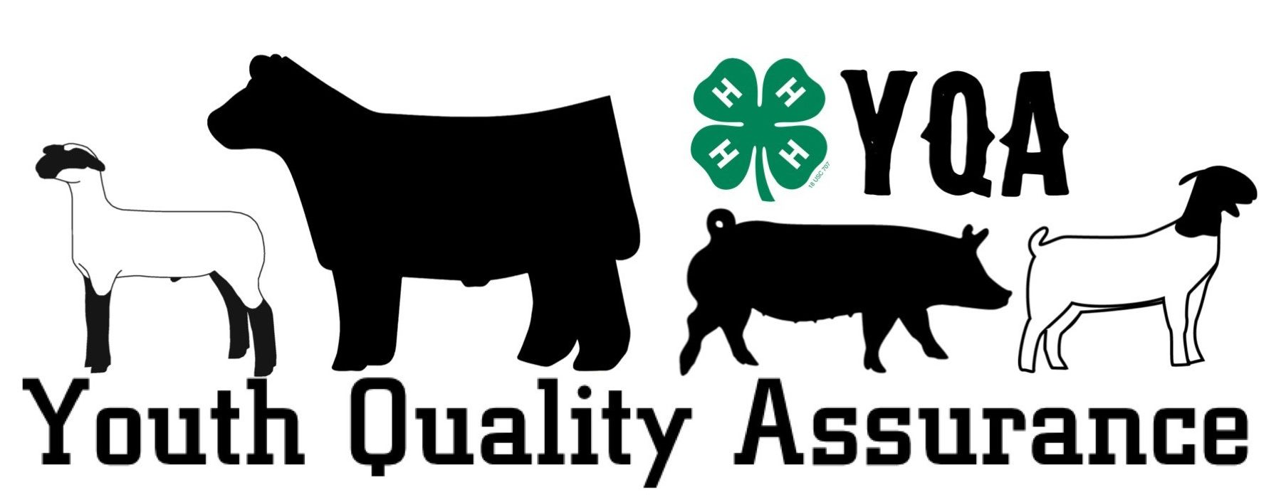 hight resolution of youth quality assurance park county 4 h regarding 4h livestock clipart free