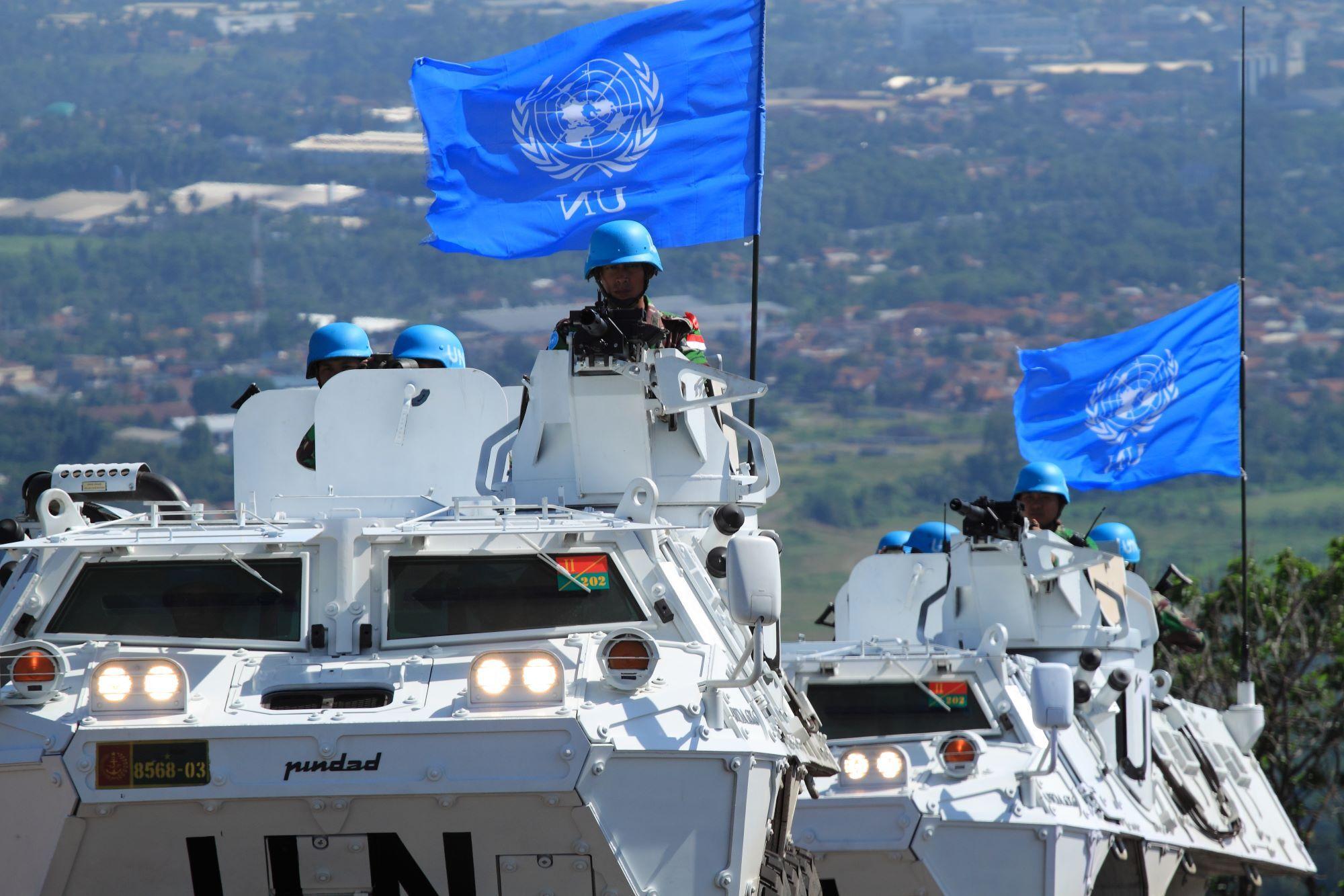 Help Us CRUSH the UN Small Arms Treaty!