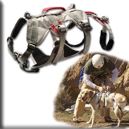 Dog Harnesses Are A Rugged Alternative To Dog Collars