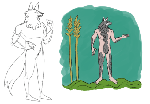 Two full body sketches of a wolf-headed man. The first has a tail. The second is drawn in Medieval style and stands next to two stalks of wheat