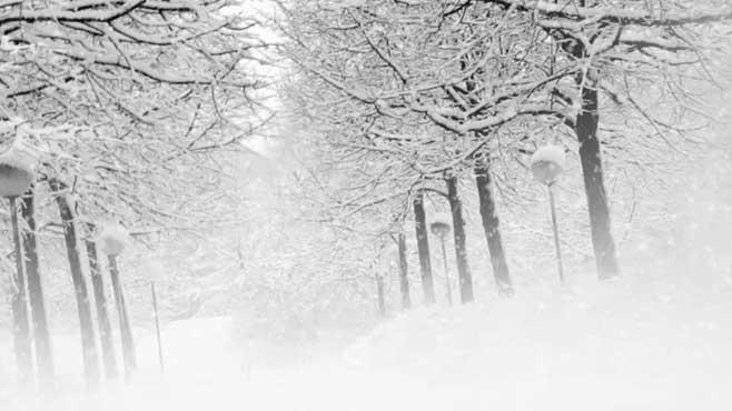 weather-heavy-snow2_29651