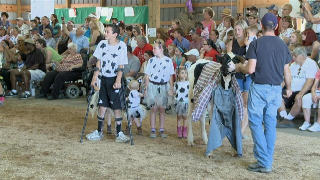 Dress a cow competition_92160